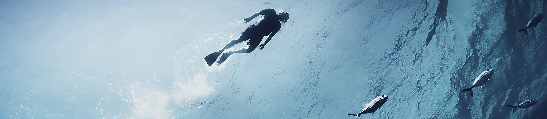 BWMS Diver