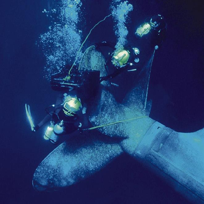 Underwater engineering seal repair & maintenance