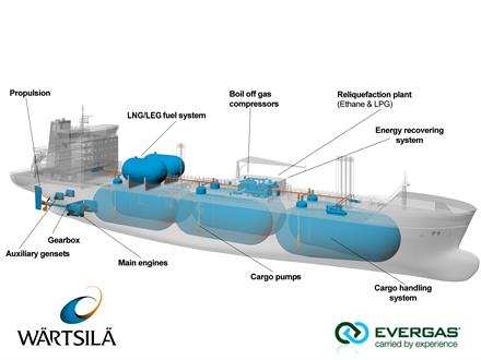 Fig. 2 - Schematic of the Evergas Dragon Series 27,500 cbm multi-gas carrier.
