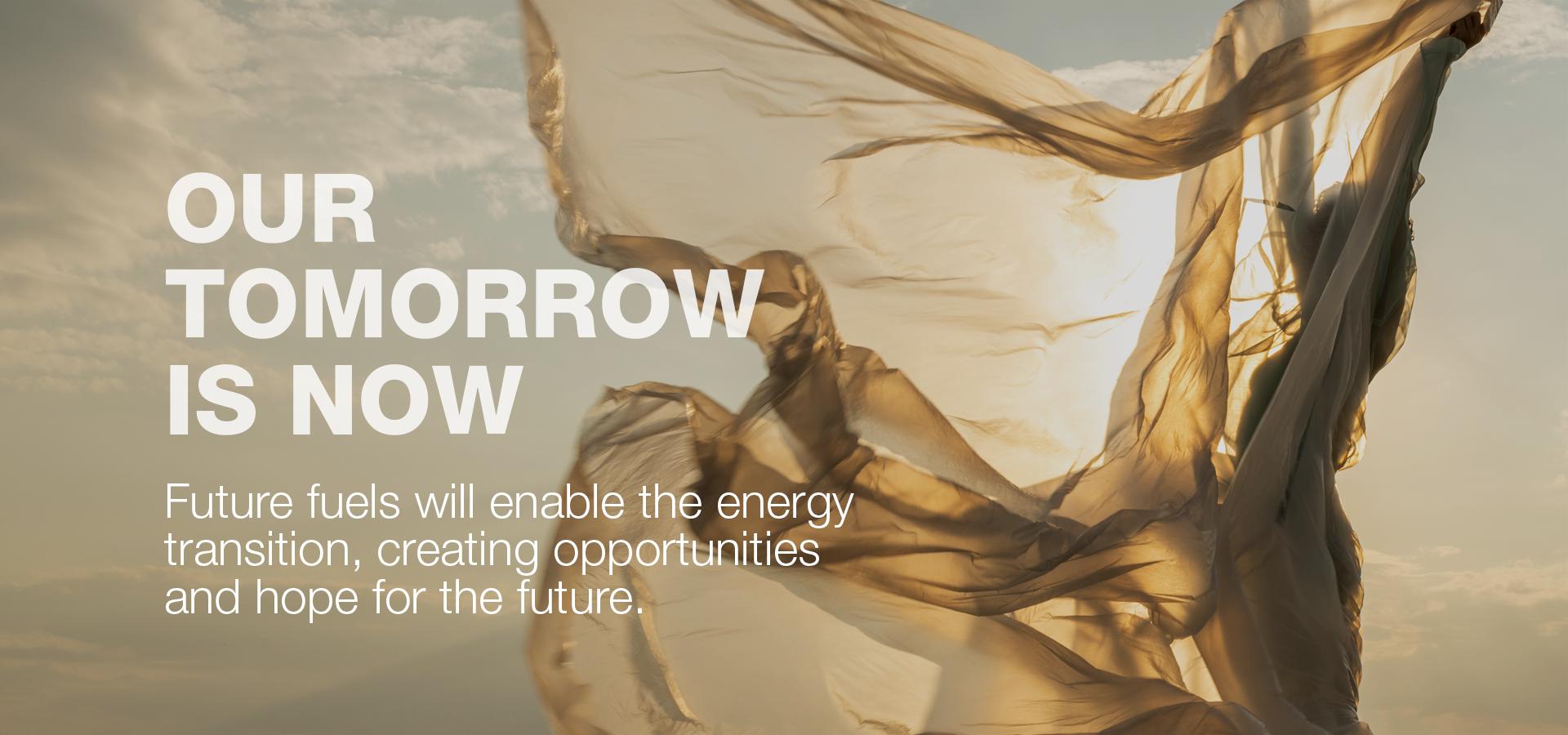 Wärtsilä - Future Fuels