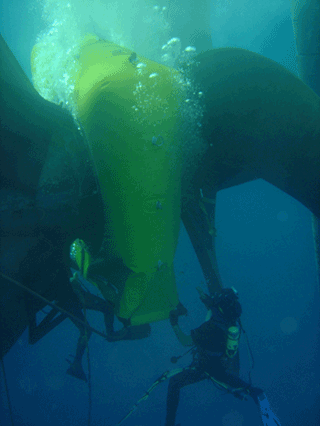 Wärtsilä supports the underwater repair and maintenance of a broad portfolio of seal products
