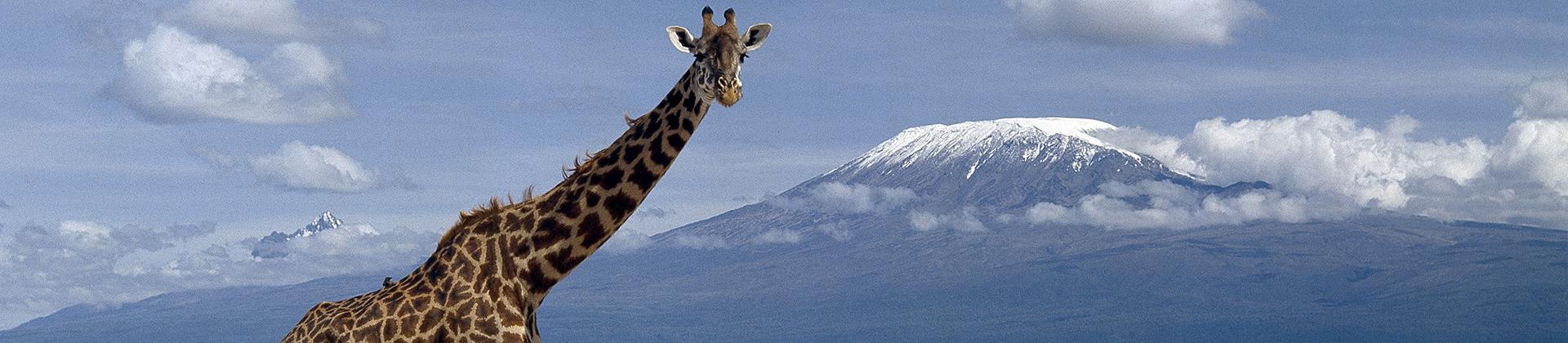 Kenya Eastern Africa