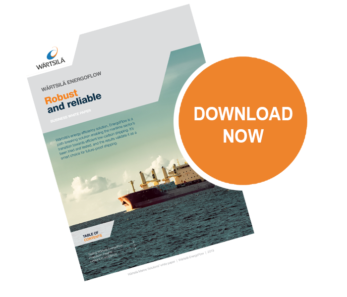 Download BWP Wartsila EnergoFlow