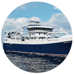 Pelagic vessels Wärtsilä