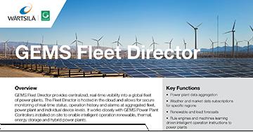 GEMS Fleet Director