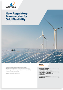 New Regulatory Frameworks for Grid Flexibility