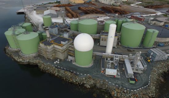 Wärtsilä Biogas Solutions
