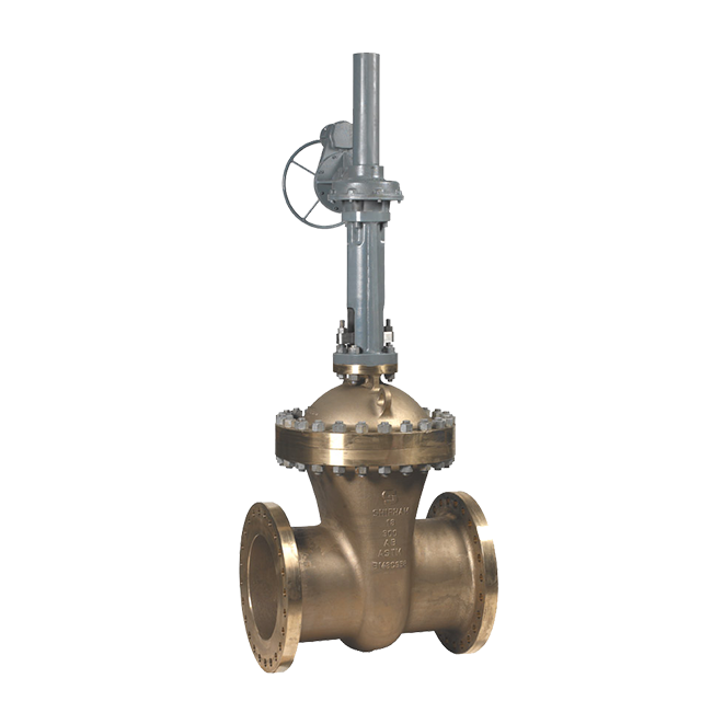 Gate Valves - Wedge