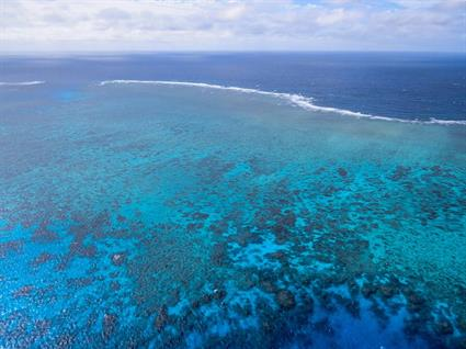 Solving the global coral reef crisis2