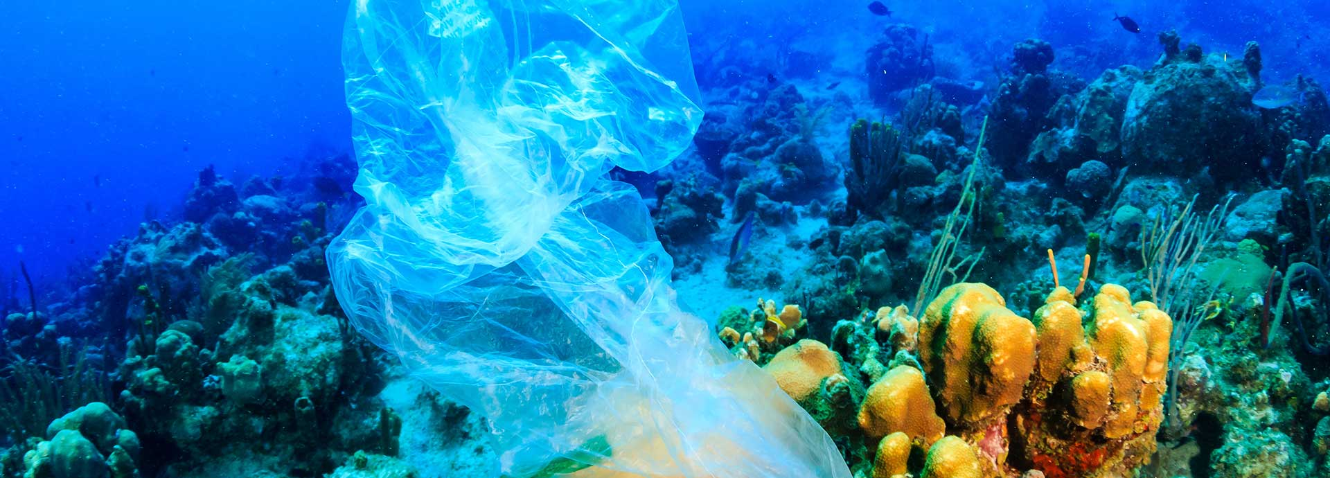 5 ways to tackle plastic waste