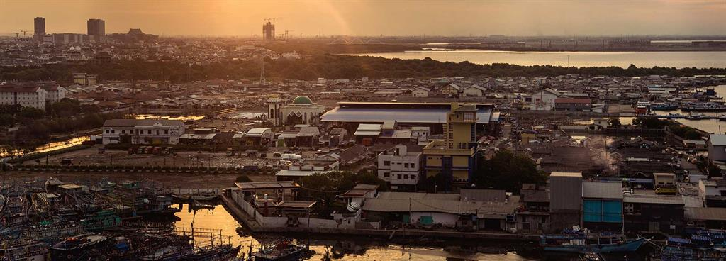 Coastal cities look for answers as seas rise