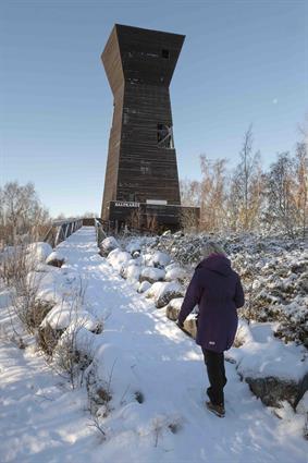 Life in a Finnish archipelago_3