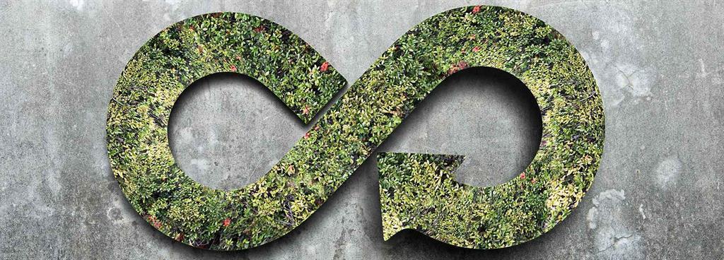 The case for building a circular economy